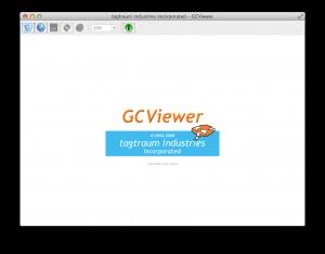 GCViewer1